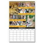 Calendar sales generate nearly $440 for CorgiAid!