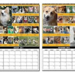 Calendar sales generate $550+ for CorgiAid!