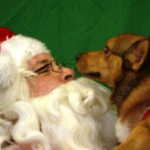 I saw Barney kissing Santa Claus!