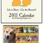 The Daily Corgi 2011 Calendar is now 40% off!