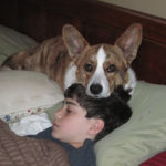 A boy and his dog:  David and Bernie …