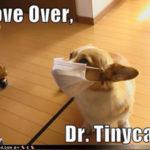 Paging Doctor Tinylegs!