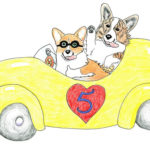 The Daily Corgi's Drive for Five!