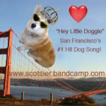 Miles, the San Fran Corgi who inspired a hit song!