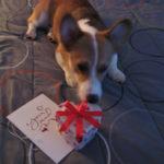 Be-Mine-Valentine Cam Part 2!
