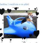 Better than store-bought … Corgi Valentines!