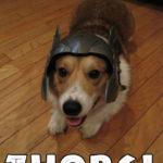 Thorgi!