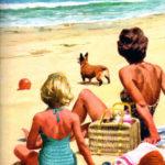 Corgi on Holiday, 1964!