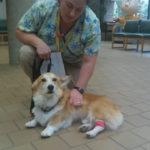 Baxter Update:  treatments begin.