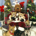 Ho-Ho-Holiday! Photos!!