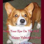 Happy Valent-Ein's Day!