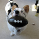 Send me your Superbowl Sunday pics!