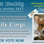 BIG Best Buddy Photo Contest — winner gets a Daily Corgi spread!