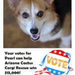 Votes for Pearl To Help Rescue Corgis!