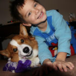 Corgi Power: All In The Family!