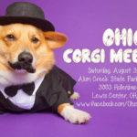 Ohio Corgi Meet-Up THIS Saturday August 3rd!