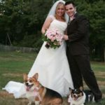 With This Corgi I Thee Wed
