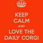 Keep Calm and Love The Daily Corgi!