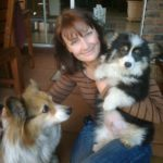 Fluffies Forever! Shilo and Toby of South Africa