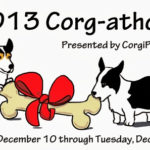 Catching Up with CorgiPals: Big Announcement!