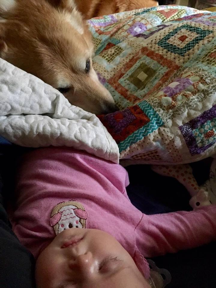 sleeperprote