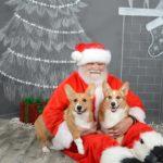Here Comes Corgi Claus!