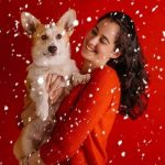 Day 4 of Twelve Big Beautiful Days of Christmas Corgis